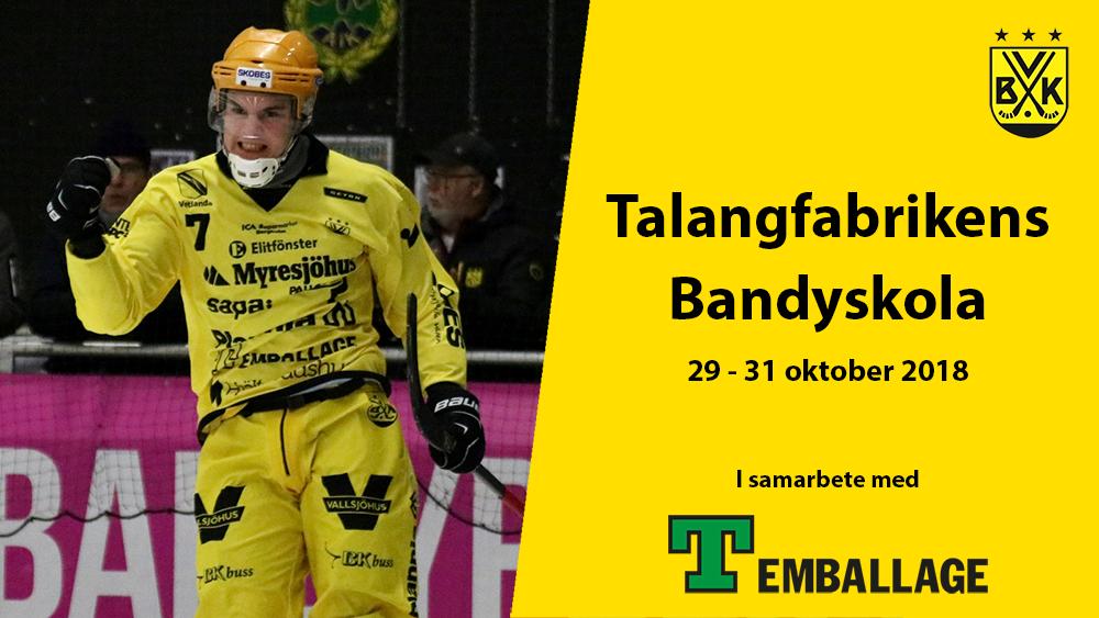 Talangfabrikens Bandyskola 29 oktober – 31 oktober